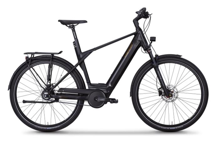 Das Kreidler Vitality Eco 20, ein gemütliches E-Bike.